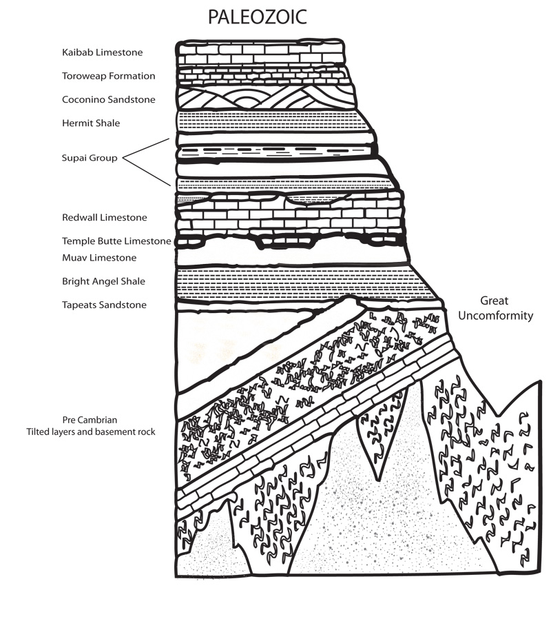 grand_canyon_diagrams1_large grand canyon narrative Sedimentary Rock Layers Diagram at gsmx.co